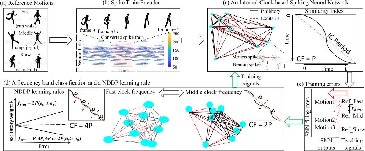Figure 2 for An Internal Clock Based Space-time Neural Network for Motion Speed Recognition