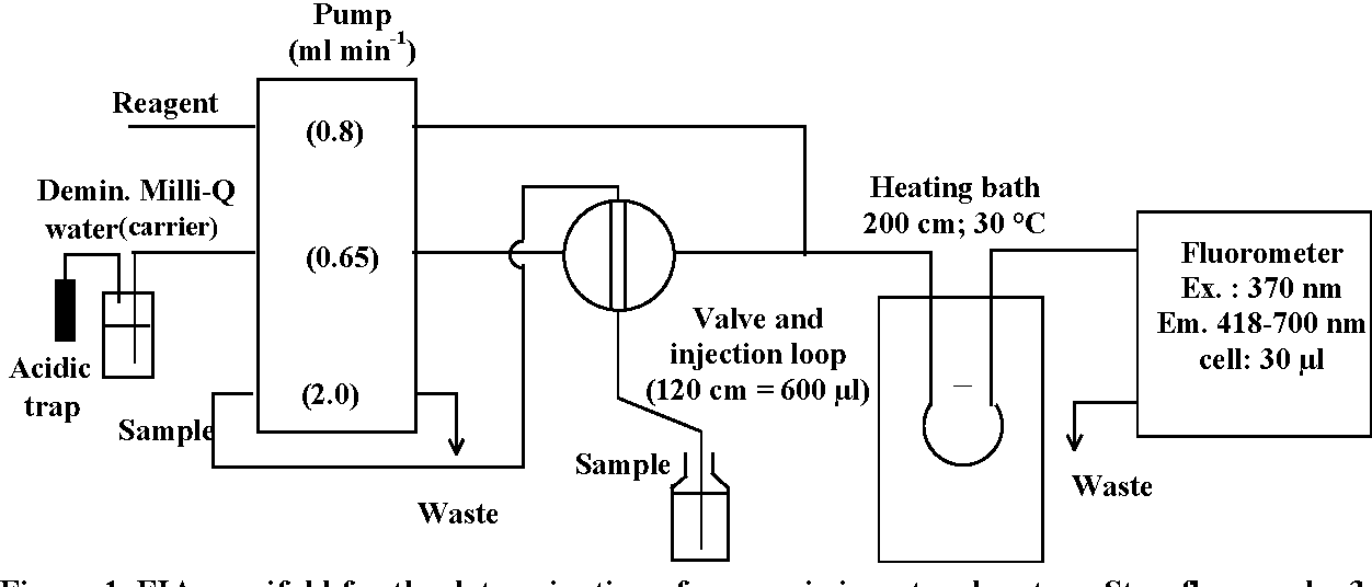 Figure 1. FIA manifold for the determination of ammonia in natural waters. Stop-flow mode: 3 min stop. Material used: pump Gilson Minipuls (setting: 6 rpm); valve Selec-CIL 99T; detector Fluoromonitor III (Laboratory Data Control, USA) with a 360 nm Black Fluorescence lamp.