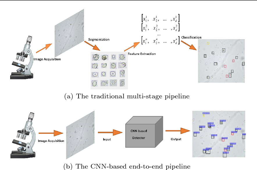 Figure 1 for CNN-Based Automatic Urinary Particles Recognition