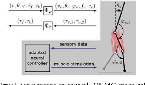 Figure 4 for Bayesian Optimization Using Domain Knowledge on the ATRIAS Biped