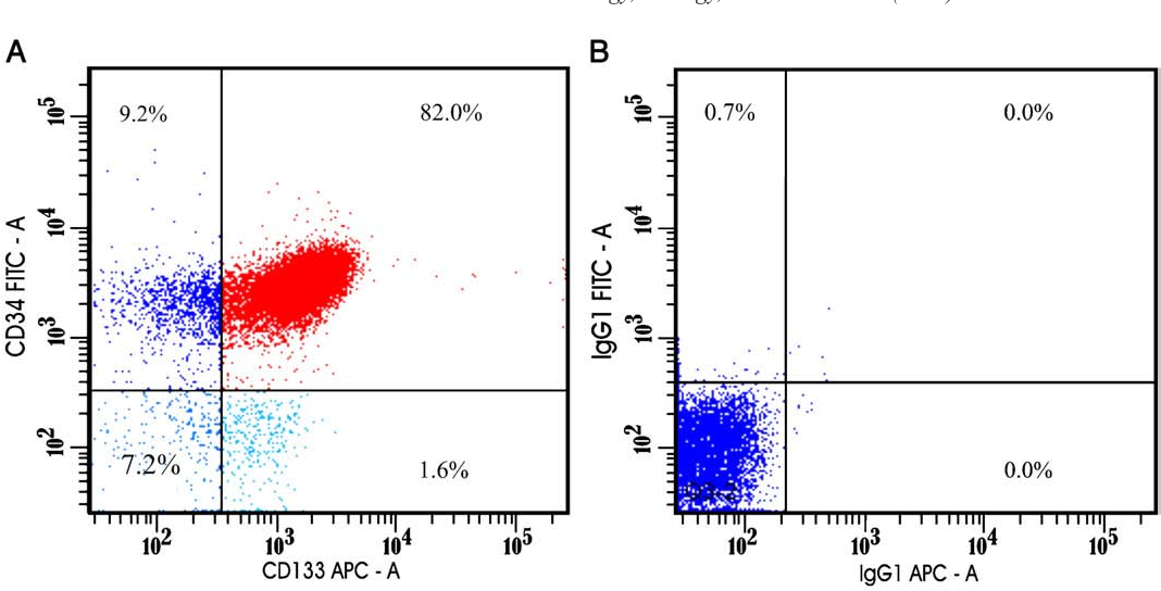 Figure 3. (A), Flow cytometry graph showing CD133 +/CD34 + (82.0%), CD133 –/CD34 + (1.6%), and CD34 +/CD133 – (9.2%). (B), Isotype control graph that shows absence of unspecific staining.