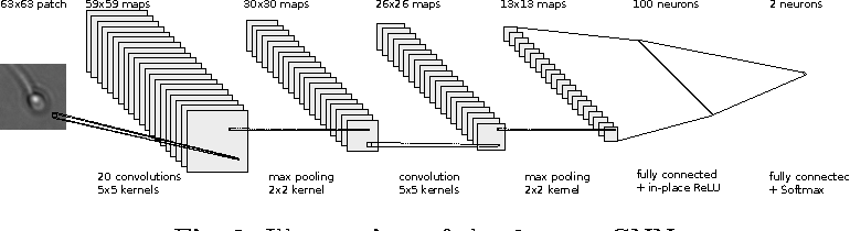 Figure 4 for Convolutional neural networks for segmentation and object detection of human semen
