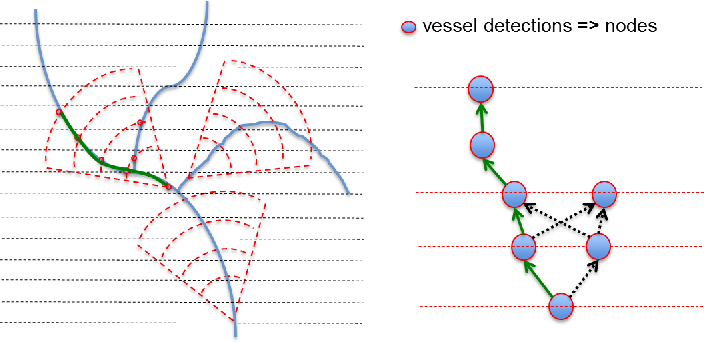 Figure 4 for Automatic tracking of vessel-like structures from a single starting point