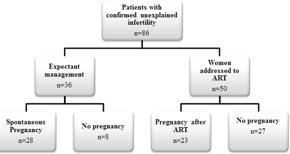 Fig. 2 Pregnancy outcome in women with confirmed unexplained infertility after surgery (n = 86). Subgroup A spontaneous pregnancies; Subgroup B pregnancies after ART; Subgroup C no pregnancy