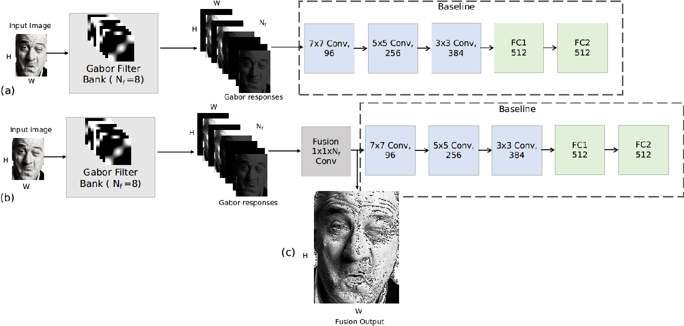 Figure 4 for Feeding Hand-Crafted Features for Enhancing the Performance of Convolutional Neural Networks