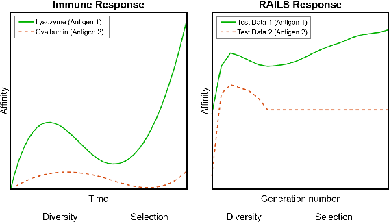 Figure 3 for RAILS: A Robust Adversarial Immune-inspired Learning System