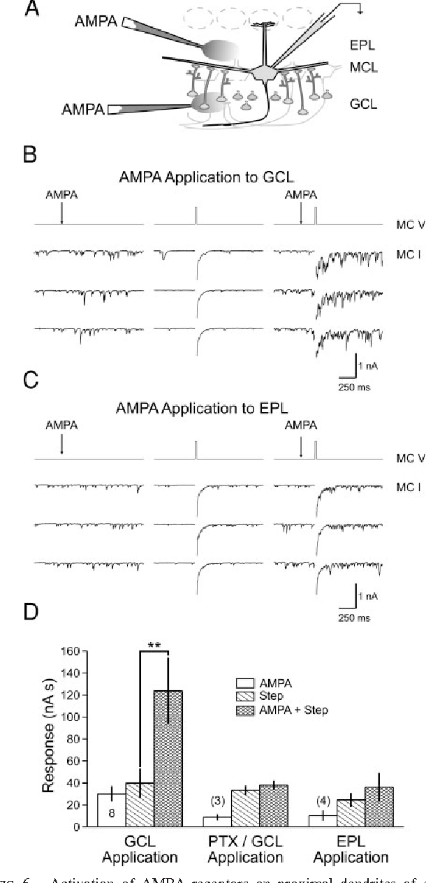 Figure 6 from γ-Frequency Excitatory Input to Granule Cells