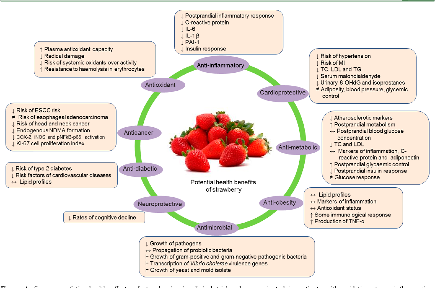 Figure 1. Summary of the health effects of strawberries in clinical trials when conducted in patients with oxidative stress, inflammation, cardiovascular disease, metabolic syndrome, diabetes, obesity, cancer, microbial infection, or neurological disorders. The symbol (↔) denotes normalizes the effect, (↓) reduces activity, (↑) increases activity, (perpendicular) suppresses activity, and (≠) no effect.