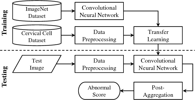 Figure 1 for DeepPap: Deep Convolutional Networks for Cervical Cell Classification