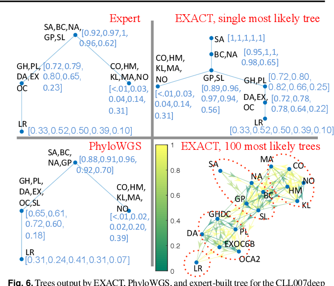 Figure 4 for Exact inference under the perfect phylogeny model