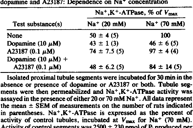 Table 2. Bidirectional regulation of Na+,K+-ATPase activity by dopamine and A23187: Dependence on Na+ concentration