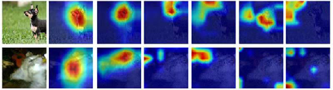 Figure 4 for Attention, Please! Adversarial Defense via Attention Rectification and Preservation