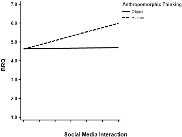The influence of social media interactions on consumer-brand