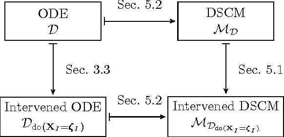 Figure 4 for From Deterministic ODEs to Dynamic Structural Causal Models