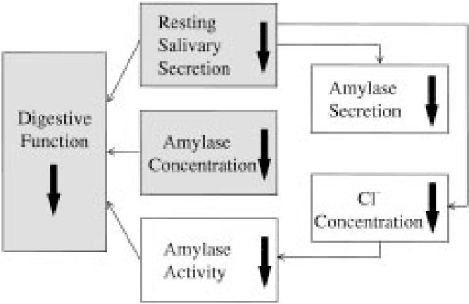 Fig. 6 Diagrammatical summary of considerations.