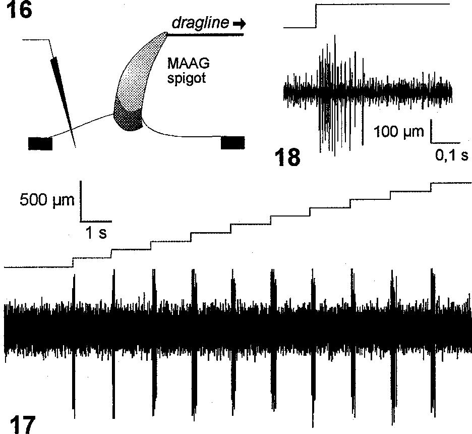 figure 16–18