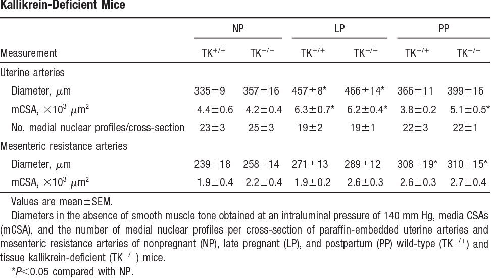 TABLE 1. Morphometric Analysis of Uterine and Mesenteric Arteries of Wild-Type and Tissue Kallikrein-Deficient Mice