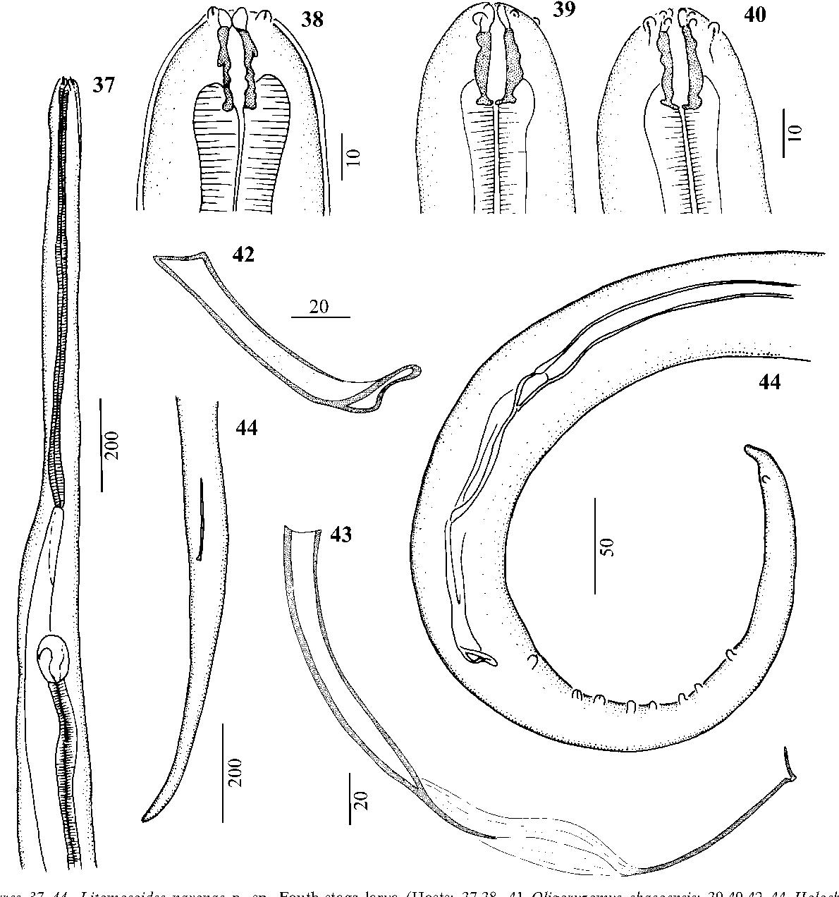 figure 37–44