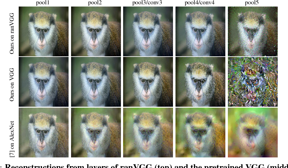Figure 1 for A Powerful Generative Model Using Random Weights for the Deep Image Representation