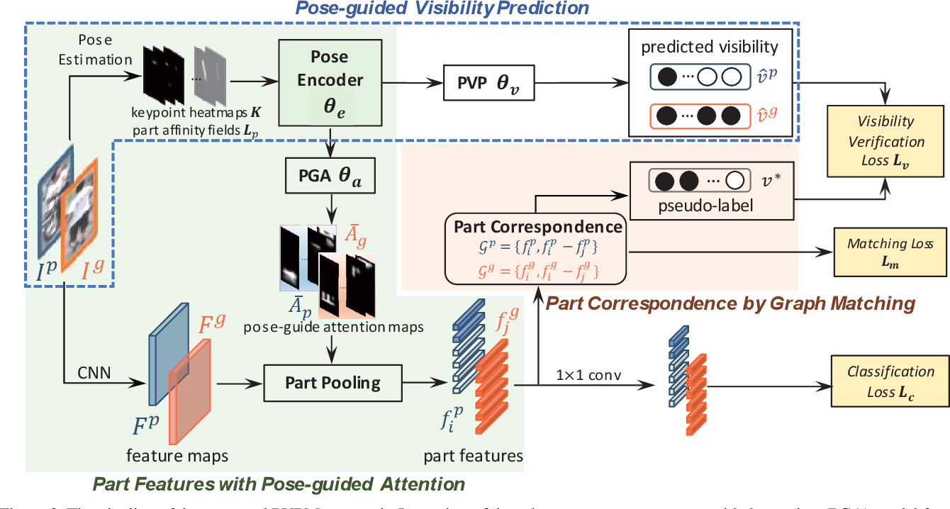 Figure 3 for Pose-guided Visible Part Matching for Occluded Person ReID