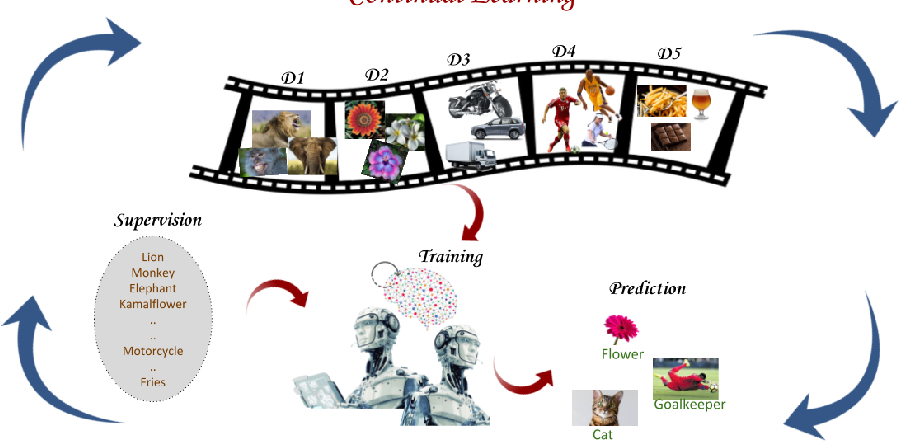 Figure 1 for Continual Learning in Neural Networks