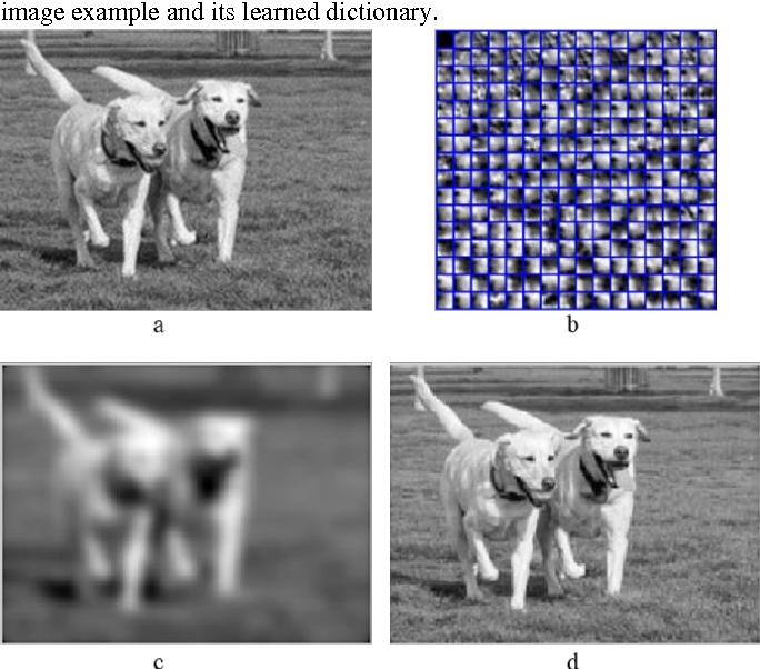 Figure 1 for Dictionary learning based image enhancement for rarity detection