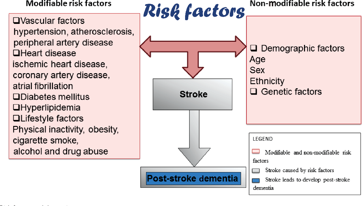 thesis on risk factors of stroke Noncommunicable diseases (ncds), including heart disease, stroke, cancer, diabetes and chronic lung disease, are collectively responsible for almost 70.