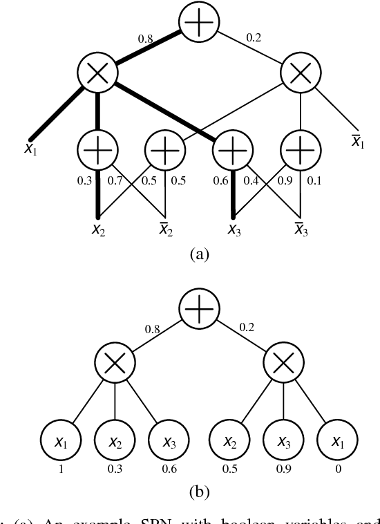 Figure 1 for Deep Compression of Sum-Product Networks on Tensor Networks