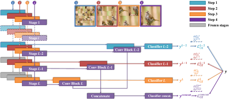 Figure 3 for Fine-Grained Visual Classification via Progressive Multi-Granularity Training of Jigsaw Patches