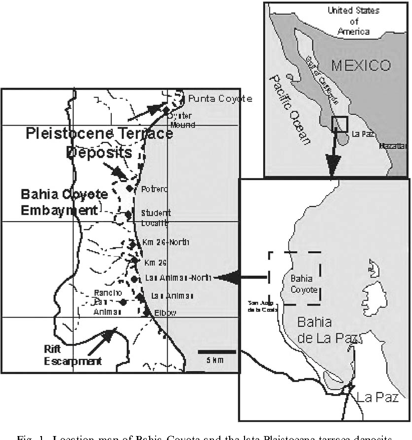 Fig. 1. Location map of Bahia Coyote and