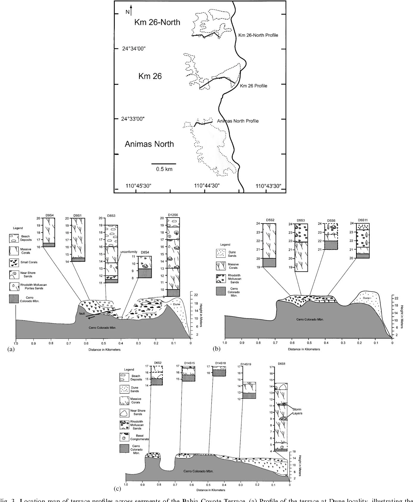 Fig. 3. Location map of terrace profiles across segments of the Bahia Coyote Terrace. (a) Profile of the terrace at Dune locality, illustrating the distribution and thickness of the main facies. Profile drawn roughly perpendicular to the coastline. Elevations in meters; distances in km. (b) Profile of the terrace at Las Animas-North locality, illustrating the distribution and thickness of the main facies. Profile drawn roughly perpendicular to the coastline. Elevations in meters; distances in km. (c) Profile of the terrace at Km 26-South locality, illustrating the distribution and thickness of the main facies. Profile drawn roughly perpendicular to the coastline. Elevations in meters; distances in km.