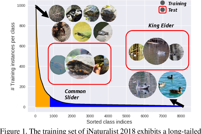 Figure 1 for Rethinking Class-Balanced Methods for Long-Tailed Visual Recognition from a Domain Adaptation Perspective