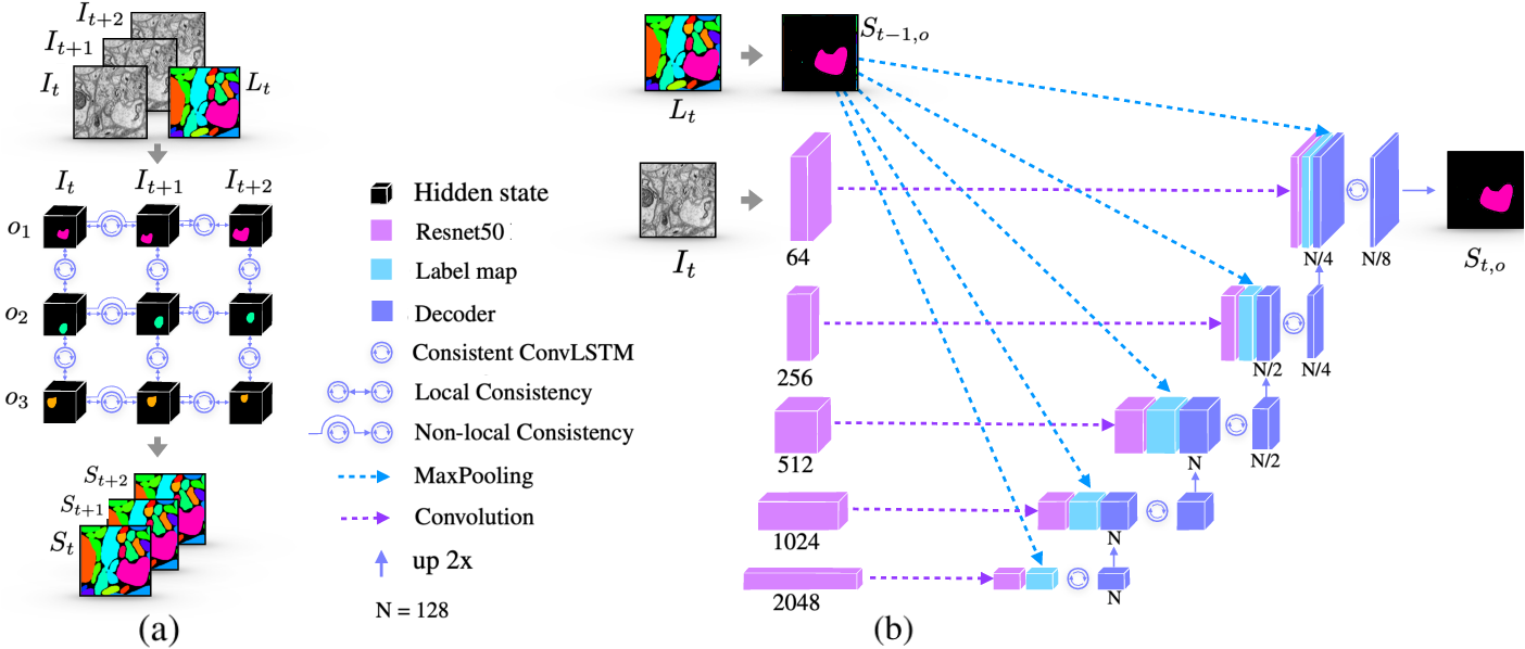 Figure 1 for Consistent Recurrent Neural Networks for 3D Neuron Segmentation