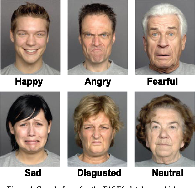 Facial expresions in
