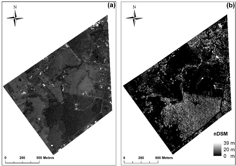 Figure 2 for Integration of LiDAR and Hyperspectral Data for Land-cover Classification: A Case Study