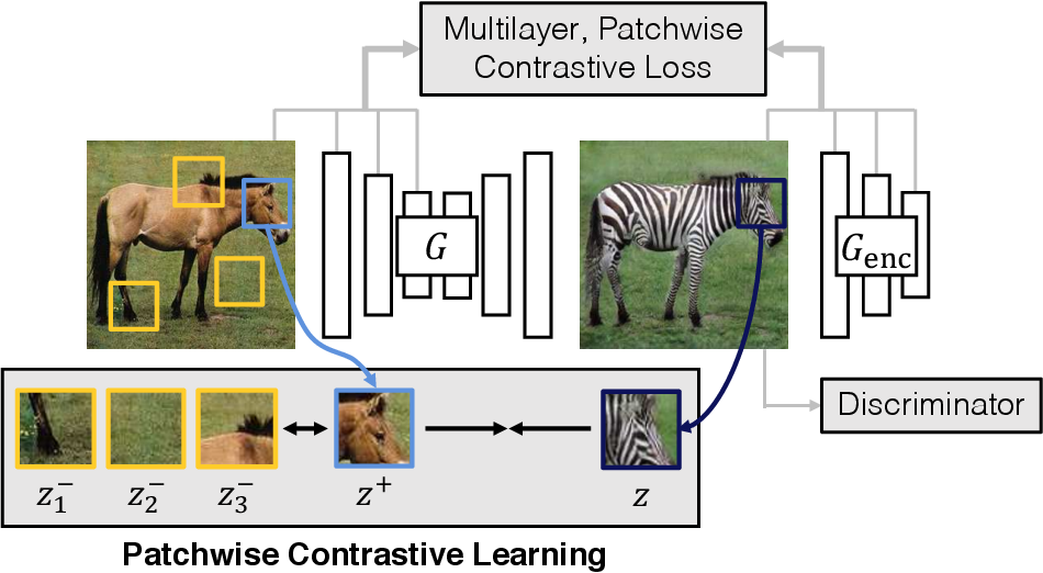 Figure 1 for Contrastive Learning for Unpaired Image-to-Image Translation