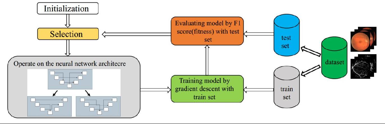 Figure 1 for ENAS U-Net: Evolutionary Neural Architecture Search for Retinal Vessel Segmentation