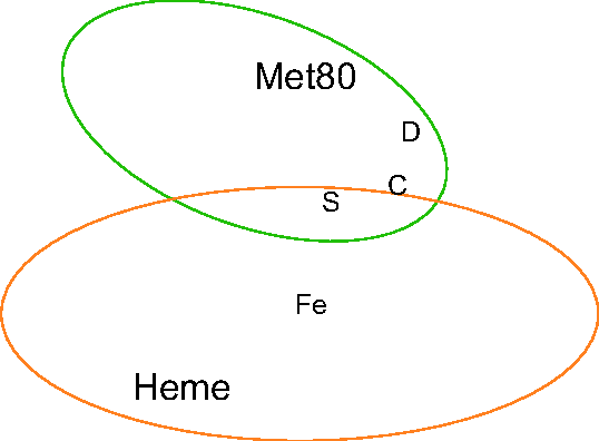 Figure 1: Cytochrome c near heme. Only the 80th methionine (Met80) residue and heme are depicted. Relevant atoms (C, D, S, Fe) are also indicated. This figure was created by VMD (Visual Molecular Dynamics) [51].