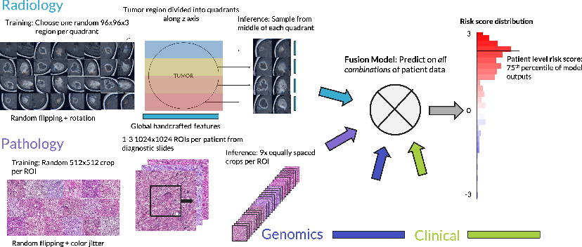 Figure 3 for Deep Orthogonal Fusion: Multimodal Prognostic Biomarker Discovery Integrating Radiology, Pathology, Genomic, and Clinical Data