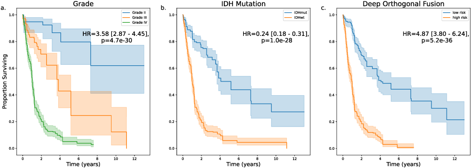 Figure 4 for Deep Orthogonal Fusion: Multimodal Prognostic Biomarker Discovery Integrating Radiology, Pathology, Genomic, and Clinical Data