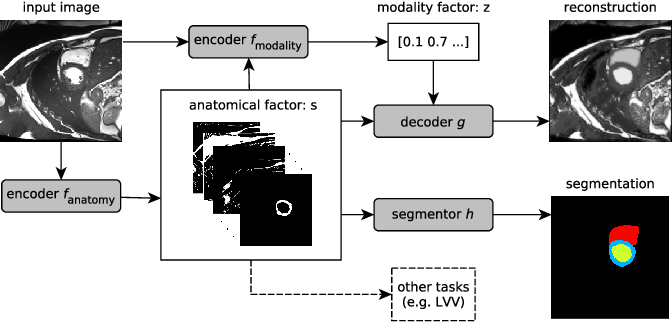 Figure 1 for Factorised Representation Learning in Cardiac Image Analysis