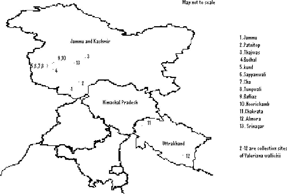 Figure 1 From Genetic Diversity In Valeriana Wallichii Dc A