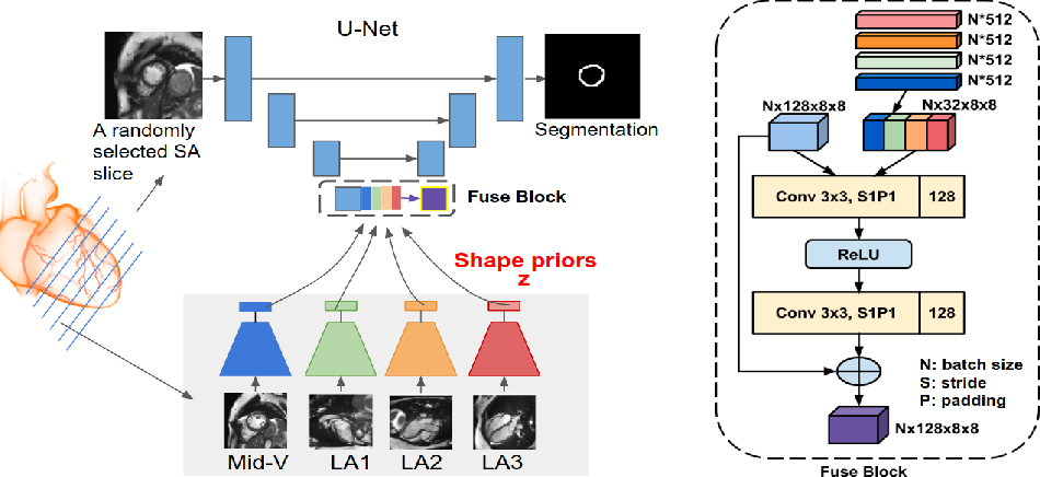 Figure 3 for Learning Shape Priors for Robust Cardiac MR Segmentation from Multi-view Images