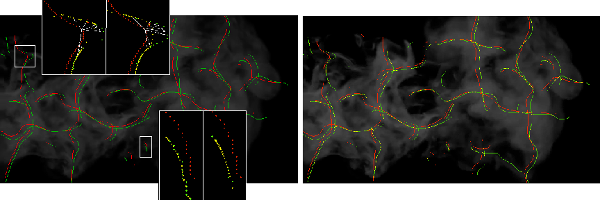 Figure 4 for Dense Motion Estimation for Smoke