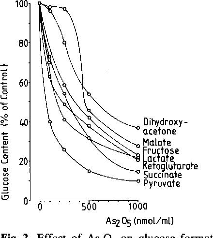 Effect Of As2o3 On Gluconeogenesis