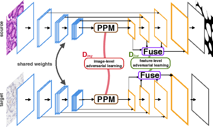 Figure 3 for Dual Adaptive Pyramid Network for Cross-Stain Histopathology Image Segmentation