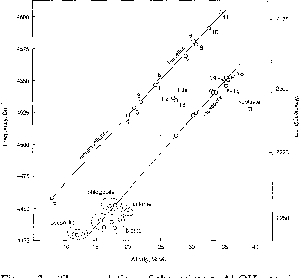 The Near-Infrared Combination Band Frequencies of Dioctahedral