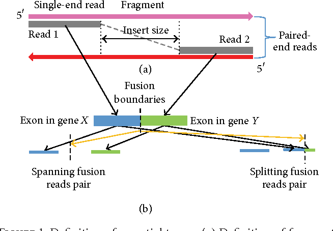 Figure 1: Definition Of Essential Terms. (a) Definition Of Fragment, Read