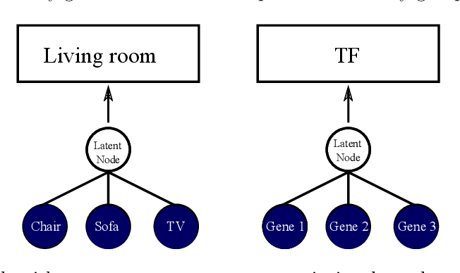 Figure 1 for Unsupervised learning of transcriptional regulatory networks via latent tree graphical models