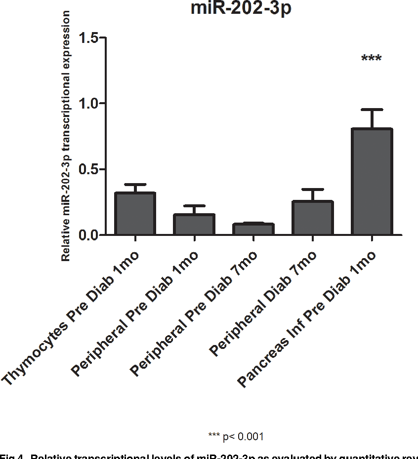 Fig 4. Relative transcriptional levels of miR-202-3p as evaluated by quantitative reverse-transcription PCR (qRT-PCR). Taqman qRT-PCRwas used to evaluate the levels of miR-202-3p while thymocytes evolve into peripheral T CD3+ lymphocytes and PILs. PD = pre-diabetic, mo = months.